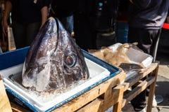 Cabeza gigante de Tuna Is On The Box del hielo en mercado de pescados imágenes de archivo libres de regalías