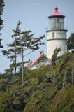 Cabeza Lightstation, costa de Hecta de Oregon Imagenes de archivo