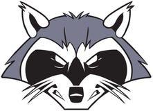 Cabeza mala áspera de la mascota del mapache de la historieta Imágenes de archivo libres de regalías
