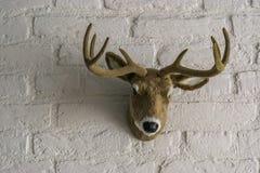 Cabeza masculina artificial de los ciervos con las astas que cuelgan en una pared de ladrillo blanca fotos de archivo libres de regalías