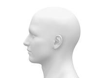 Cabeza masculina blanca en blanco - vista lateral Imagen de archivo libre de regalías