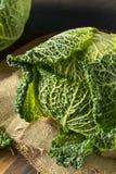 Cabeza orgánica cruda de la col de col rizada Foto de archivo libre de regalías