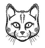 Cabeza pintada del gato Foto de archivo libre de regalías