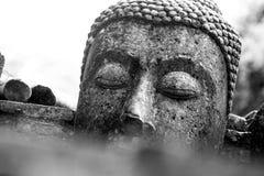 Cabeza quebrada de Buda en los escombros de ruinas imagen de archivo libre de regalías