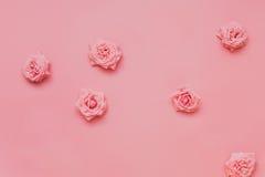 Cabeza rosada de las rosas en fondo en colores pastel Fotos de archivo