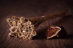 Cabeza seca de la amapola en fondo de madera Fotografía de archivo