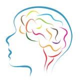 Cabeza y cerebro stock de ilustración