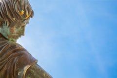 Cabeza y cielo de bronce Imagen de archivo