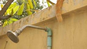 Cabezal de ducha del vintage en jardín con Cat Tail fotos de archivo
