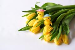 Cabezas blancas de los pollos del juguete del fondo dos de los tulipanes amarillos fotos de archivo