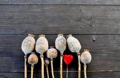 Cabezas de la amapola de la tarjeta del día de San Valentín Fotografía de archivo