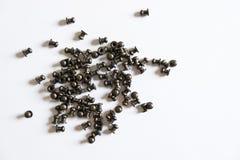 Cabezas de tornillo Fotografía de archivo libre de regalías