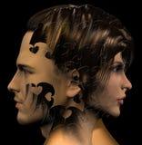 Cabezas del hombre y de la mujer combinadas Fotos de archivo