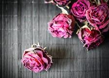 Cabezas secas de rosas púrpuras en un fondo negro Fondo oscuro con las flores Imagen de archivo