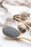 Cabezas y semillas secadas de la amapola Imágenes de archivo libres de regalías