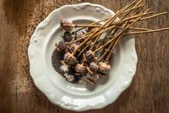 Cabezas y semillas secadas de la amapola Fotografía de archivo