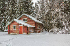 Cabin. Abandoned cabin in the winter Royalty Free Stock Photography