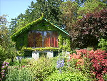 Cabin covered in vine. A lush full garden with many varities of plants stock images