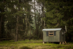 Cabin in dark woods Royalty Free Stock Photo