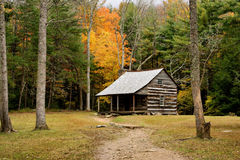 Cabin deep in the forest. Cabin nestled deep in the mountains tucked away from cilivization Stock Images