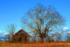 Cabin in fall. Old weathered barn beside an old tree against a blues sky with fluffy rain clouds royalty free stock photos