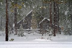 Cabin in the forest. Covered with snow Stock Photography