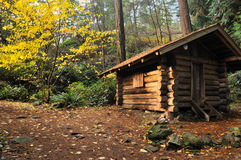 Cabin in forest Stock Image