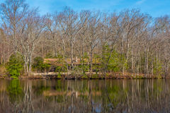 Cabin by a Lake Royalty Free Stock Photography