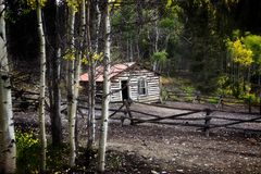 Cabin Living Deep in the Woods. This seemingly abandoned cabin is nestled deep in the woods near Bonanza, Colorado. It is so shaded by a large tree canopy the Stock Photography