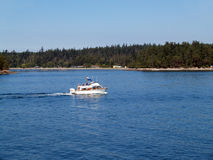 Cabin motor cruiser boat on bay near trees Royalty Free Stock Photo