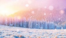 Cabin in the mountains in winter, background with some soft high royalty free stock photography
