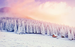 Cabin in the mountains in winter. Mysterious fog. Carpathians Stock Photos