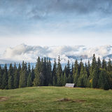 Cabin and pines Royalty Free Stock Photos