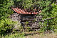 Old Log Cabin in the Woods Stock Photo