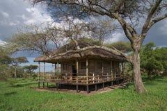 Cabin on the savannah stock image