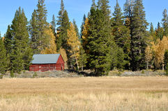 Cabin in the Sierra Nevada Mountains Royalty Free Stock Photos