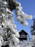 Cabin in the snow. Woods stock photos
