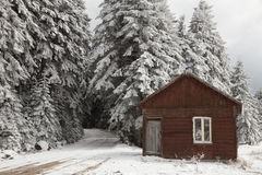 Cabin in the snow Royalty Free Stock Photos