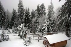 Cabin in snowy forest Royalty Free Stock Photo