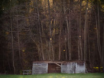A cabin or stable in the woods II Royalty Free Stock Photo