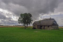 Cabin and a tree on the battlefield Royalty Free Stock Photography