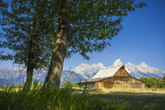 Cabin under tetons mountain Royalty Free Stock Image