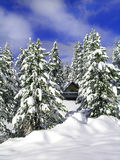 Cabin in Winter. Cabin surrounded by snow covered trees with sky and clouds Royalty Free Stock Images