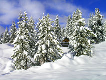 Cabin in Winter. Cabin surrounded by snow covered trees with sky and clouds Stock Images