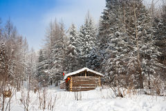 Cabin in winter forest Royalty Free Stock Photo