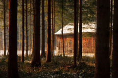 Cabin in the woods. At sunset stock images
