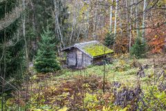 Cabin in woods alps. Cabin in woods forest in fall royalty free stock image