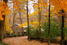 Cabin in the woods with autumn. A cabin in the woods surrounded by trees with autumn leaves stock photo
