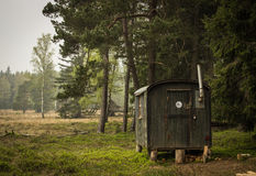 Cabin in the woods. Cabin in german conifer forest Stock Image