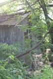 Cabin in woods. Hidden cain in the woods Stock Photo